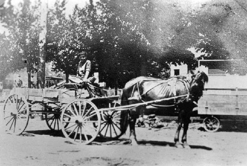 an old black and white photo of a horse drawn cart with a man riding in it