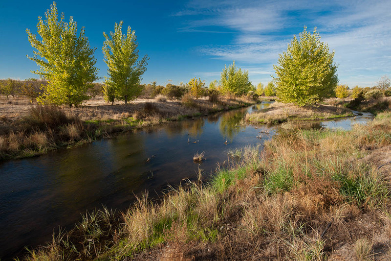 an image of Morris Creek